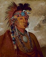 Shó-me-kós-see, The Wolf, a Chief