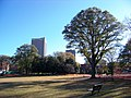 Georgia Tech, Atlanta, GA, USA - panoramio - Idawriter (3).jpg