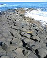 Giant's Causeway 2006 17.jpg
