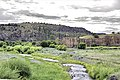 Gila river.jpg