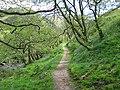 Gleann Meadail path - geograph.org.uk - 920895.jpg