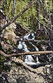 Glen Ellen Cascade, Keene NH (2863043540).jpg