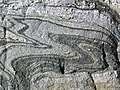 Gneiss (Archean; Ennis Lake North roadcut, Madison County, Montana, USA) 2 (31653981728).jpg