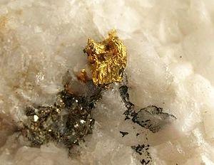 Atlantic Cable Quartz Lode - 6 mm. gold crystal cluster on  milky quartz, from the Atlantic Cable Quartz Lode