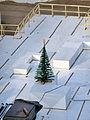 Grabungszone Köln mit Weihnachtsbaum.jpg