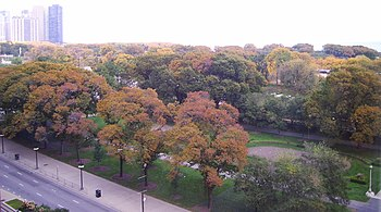 Grant Park in Chicago, Illinois as seen from t...