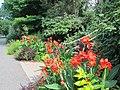 Green Spring Gardens in August (14734056137).jpg