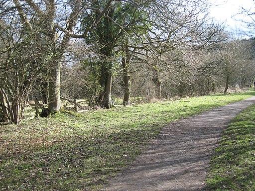 Grosmont-Goathland railway walkway - geograph.org.uk - 1778581