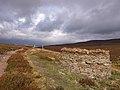 Grouse butts above Black Burn - geograph.org.uk - 558851.jpg