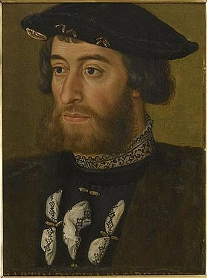 Guillaume du Bellay - Portrait of Guillaume du Bellay, now in the Musée de Versailles (Oil on wood, c. 1535)