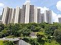 HK 城巴 619 CityBus 遊車河 tour view 觀塘區 Kwun Tong District 藍田 Lam Tin 鯉魚門道 Lei Yue Mun Road June 2020 SS2 11.jpg