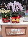 HK 尖沙咀 TST 廣東道 Canton Road 中港城 China Hong Kong Centre CNY 新年花藝 flowers night February 2021 SS2 06.jpg
