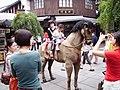 Hangzhou-exotic bazaar - panoramio - HALUK COMERTEL (20).jpg