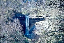 Hardraw Force, near Hawes, in Springtime - geograph.org.uk - 71940.jpg