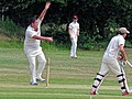 Hatfield Heath CC v. Takeley CC on Hatfield Heath village green, Essex, England 28.jpg