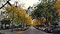 Hegelstraße in Magdeburg.jpg