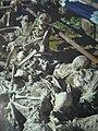 Herculaneum Tote.jpg