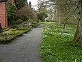 Hergest Croft Gardens - panoramio - PJMarriott.jpg