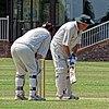Hertfordshire County Cricket Club v Berkshire County Cricket Club at Radlett, Herts, England 037.jpg