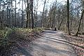 Hildener Heide 2016 181.jpg