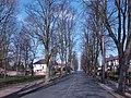 Hillcrest Avenue - geograph.org.uk - 389104.jpg