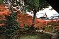 Honmachi 15-chome, Higashiyama Ward, Kyoto, Kyoto Prefecture 605-0981, Japan - panoramio (10).jpg