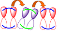 Hopping mechanism.PNG