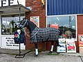 Horse-equin^ - geograph.org.uk - 443904.jpg