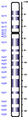 Human chromosome 04 from Hemabase database.png