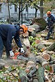 Hurricane Sandy Clean-up (8293591765).jpg