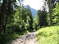 IMG 0893 - Obertraun-Dachstein - Path to Hoher Dachstein.JPG