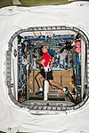 ISS-53 Mark Vande Hei jogs on a treadmill inside the Tranquility module.jpg