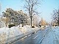 Iarna grea - panoramio.jpg