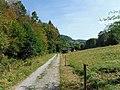 Im Reichenbachtal zwischen Reichental und Hilpertsau (2).jpg