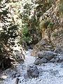Imbros gorge (Crete).JPG