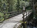 In den Aua Brücke über das Landwasser, Davos Wiesen GR 20190822-jag9889.jpg
