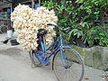 Indonesia bike29.JPG