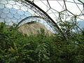Inside Eden (870027371).jpg