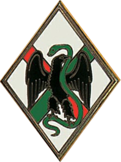 1st Foreign Regiment
