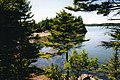 Irving Nature Reserve, Saint John (3711265374).jpg