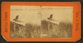 Jacksonville (Man with rifle peering into the river, town in the background), from Robert N. Dennis collection of stereoscopic views.png