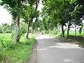 Jalan Raya Luragung-Cidahu, Kuningan - panoramio (2).jpg