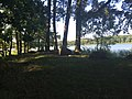 Jezioro Jeziory Małe.jpg