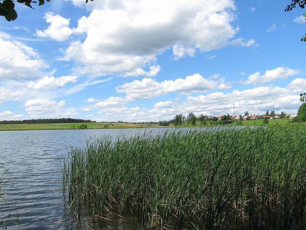 1024px-Jezioro_Lubiki_od_strony_ulicy_Jeziornej.JPG