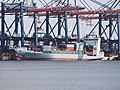 Jork (ship, 2001) IMO 9234991 Port of Rotterdam pic1.JPG