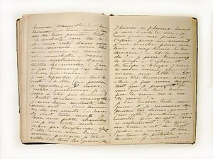 Private journal, Diary of Henriette Dessaulles...