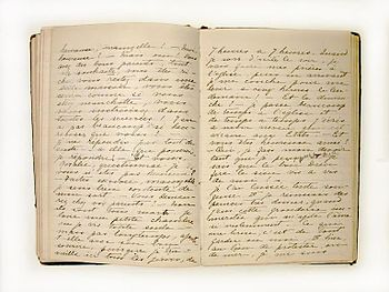 English: Private journal, Diary of Henriette D...