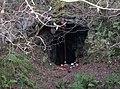 Jug Holes - geograph.org.uk - 604174.jpg
