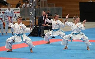Karin Prinsloo (karateka) South African Karateka and winner of the 2001 World Games, living in Australia