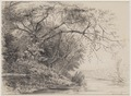 KITLV - 48B5 - Borret, Arnoldus - River bank on Plantation Catharina Sophia, Saramacca, Surinam - Pencil - 1878-10-14.tif